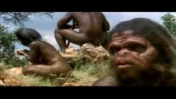 Old Human Xxx In Jungle
