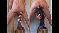 Stallion Penis and Fucking Big Horse Cocks Anal Extreme