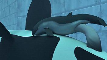 Orca yiff - tasuric №3