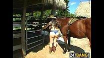 A Horse Fantasy