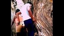 Jovenes  cogen en un árbol en  el bosque